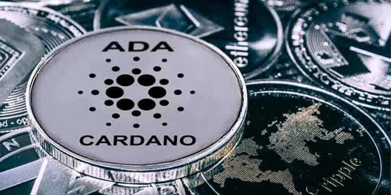 Cardano coins
